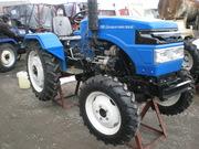 Трактор Xingtai 244 (Синтай 244)