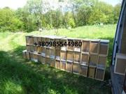 Бджолопакети , Пчелопакеты на 2019 год с доставкой